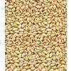 Sesame Seeds 3.5 oz(Natural)-Indian Grocery,Spice,USA