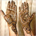 Supreme Dulhan Arbi Mehandi,Ayurvedic,indian henna,USA