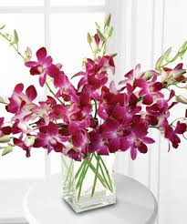 Want to make someone feel like they're on a tropical honeymoon? This romantic gift is the perfect choice. Exotic purple orchids and island greenery are arranged in a standout modern cube vase. If you're looking for a romantic gift with a whole lot of flower power, you've found it!
