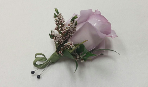 Lavender Rose with accents