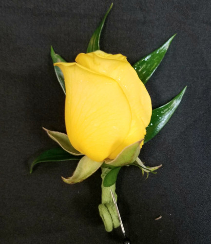 Yellow rose boutonniere