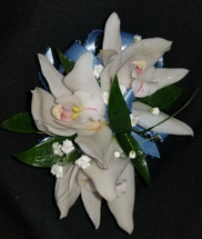 Mini white cymbidium orchids with a light blue ribbon