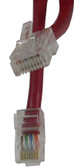 CAT-5E Cable 2 FT, Red Jacket (m8rd002f)