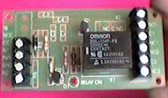 DPDT Relay Module with 12DC Coil Voltage (rl10dpdt)