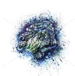 VDD Exclusive Gorilla Warfar - White Blue Splatter