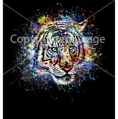 VDD Exclusive Tiger Black Splatter