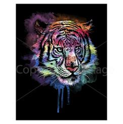 VDD Exclusive Tiger Black Purple Haze