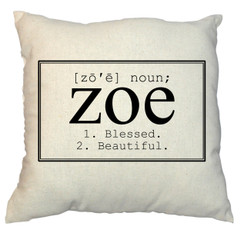 Name in a Box Design 20 x 20 Zippered Cotton Pillow
