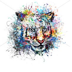 Tiger VDD Exclusive Tiger Splatter 1