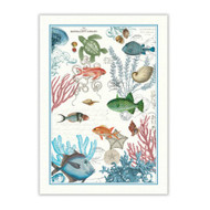 Sea Life Tea Towel by Michel Design Works coastal fish and sea life design on a white back ground of 100% cotton