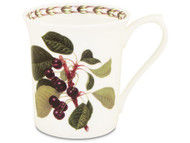Queens William Hookers Fruit Mug Cherry by Churchill - Fine Bone China Gift Boxed