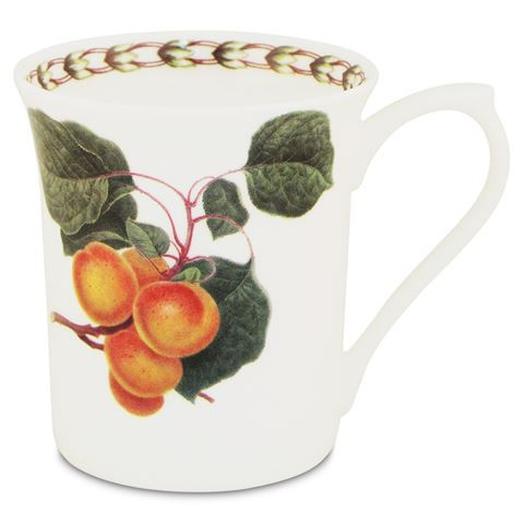 Queens William Hookers Fruit Mug Apricot by Churchill - Fine Bone China Gift Boxed