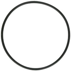 O-Ring for Strainer Pot Lid, Waterco Hydro 5000 Pump (19B5051)