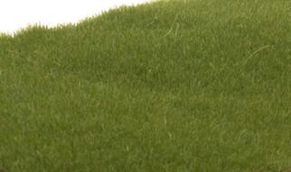 FS613 Woodland Scenics Static Grass Dark Green 2mm