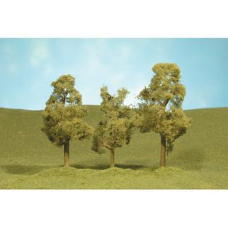 "32009 Bachmann Sycamore Trees 3""-4""(3)"