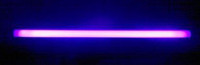 "ADJ 48"" Blacklight UV Fluorescent Tube"
