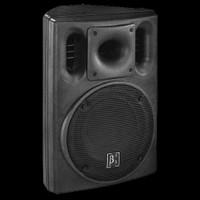 """Omnisistem Beta 3 U10 250W 10"""" 2-Way Full Range Passive Loudspeaker"""
