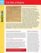 U.S. Bill of Rights FlashCharts by Kathy Furgang, 9781411469174