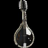 Union Series Mandolin Black With Pickup