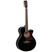 Tanglewood TW4BK Winterleaf Super Folk C/E Black Gloss