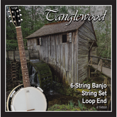 Tanglewood TWBS6 Banjo 6-String Set - Loop End