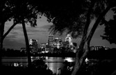Austin's Wooded Skyline