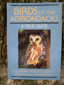 Birds of the Adirondacks