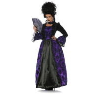 https://d3d71ba2asa5oz.cloudfront.net/12020345/images/uw28146%20women%27s%20eerie%20marie%20antoinette%20victorian%20costume%20dress.jpg