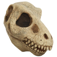 T-Rex Skull Adult Latex Mask Dead Jurassic Dinosaur Animal Costume Accessory