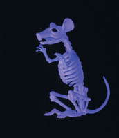 Black Light Responsive Ghostly Rat Skeleton Bones Halloween Prop Haunted House