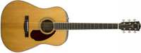 Fender PM-1 Standard Dreadnought, Natural (With Case)
