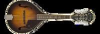Fender Concert Tone Mandolin A 53S