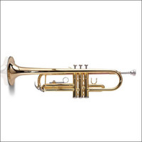 ASHTON TR10 STUDENT ALTO SAXOPHONE (TR-10) Guitar World PH 07 5596 2588