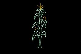Corn stalk outdoor decoration