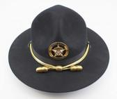 Campaign Hat Acorns