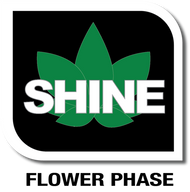 VEG+BLOOM SHINE - 1 LB