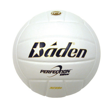Perfection Volleyball
