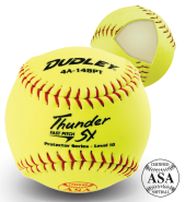 "Dudley Thunder SY Protector Series Level 10 - Fastpitch 12"" Softball - per dozen"