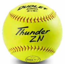 "Spalding 21"" NSA Trophy Softball"