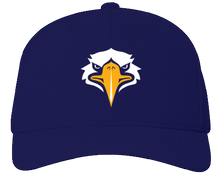 Curved Flex Fit Hat
