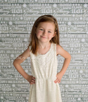 Silver Christmas Wood Photography Backdrop - Holiday Photography Backdrop - Item 3023