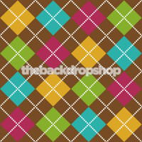 Photography Backdrop for Kids Photo Shoot - Vinyl Photo Background  - Item 111