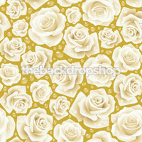 Shabby Chic Rose Wallpaper Photography Backdrop - Item 373