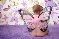 Fun Butterfly Backdrop for Studio Photography - Item 575