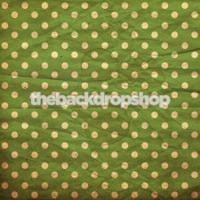 Green Wallpaper Polka Dot Photo Prop  - Item 590