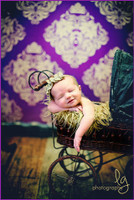 Purple and Gold Patterned Backdrop - Item 671
