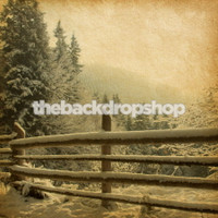 Snowy Winter Scene Photography Backdrop for Holiday Photoshoots - Item 1110