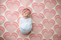 Newborn Photo Session Backdrop - Pink Heart Wallpaper Photo Background - Item 1247