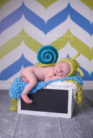 Lime Green and Blue Chevron Pattern Photo Backdrop for Portrait -  Chevron Photo Background - Item 1284