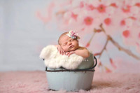 Cherry Blossom Flowers and Branch Photo Backdrop  - Item 1628